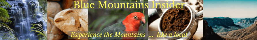 Blue Mountains Insider header image